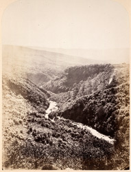 The Lower Clyngwyn, Vale Of Neath